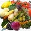 Offer to sell Fresh Fruits &amp; Vegetables